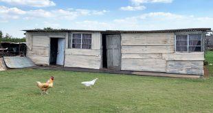 Livelihood restoration, new focus for miners